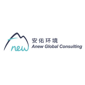 Anew Global Consulting